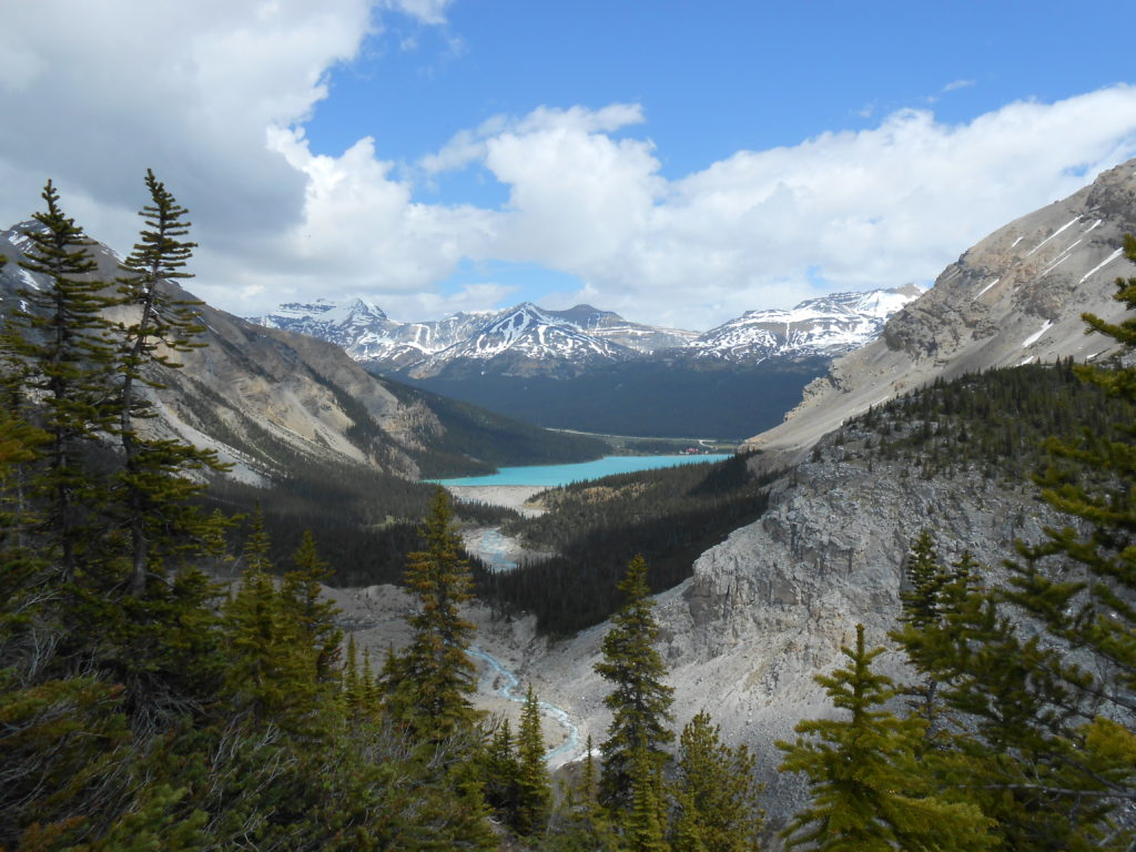 View of Bow Lake from the trail to Iceberg Lake, Alberta, Canada